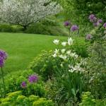 kerttervezés-kertépítés